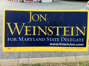 Jon Weinstein for Delegate (2010)