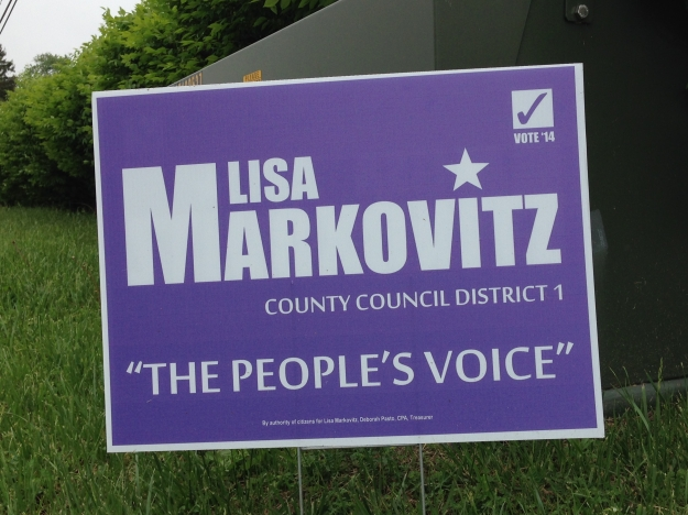 markowitz-county-council-1-2014-small
